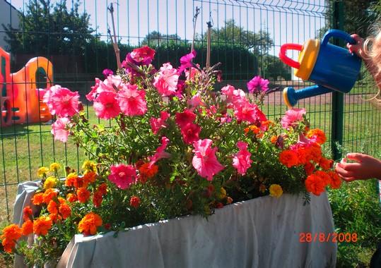 crèche fleurie